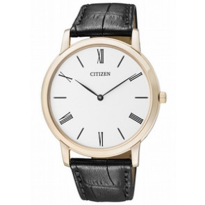 Citizen AR1113-04B