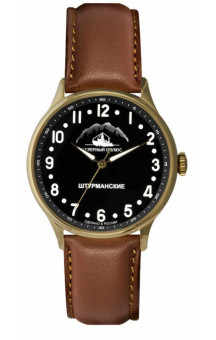 Sturmanskie Arctic S 2409-2266294